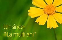 Floriile sa vă aducă pace şi înţelepciune
