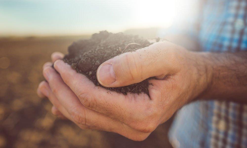 Agronutrientii potriviti pentru productivitatea culturilor